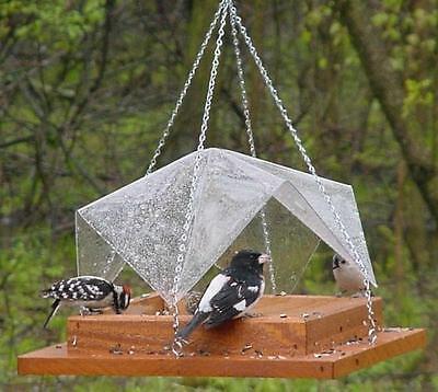 Songbird Essentials 9 x 9 Super Tray w/ Cover Bird Feeder SE534