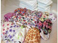 Reusable nappies - Little Bloom - Girls