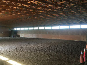 AMAZING PRIVATE HORSE FARM FOR SALE London Ontario image 10