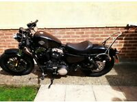 Harley Davidson 48 1200 xl forty eight only 7 months old