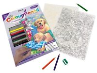 Royal & Langnickel Colour Pencil by Numbers Wash Day Fun Designed Painting Set