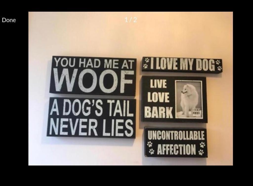 7 piece dog lover wooden wall art
