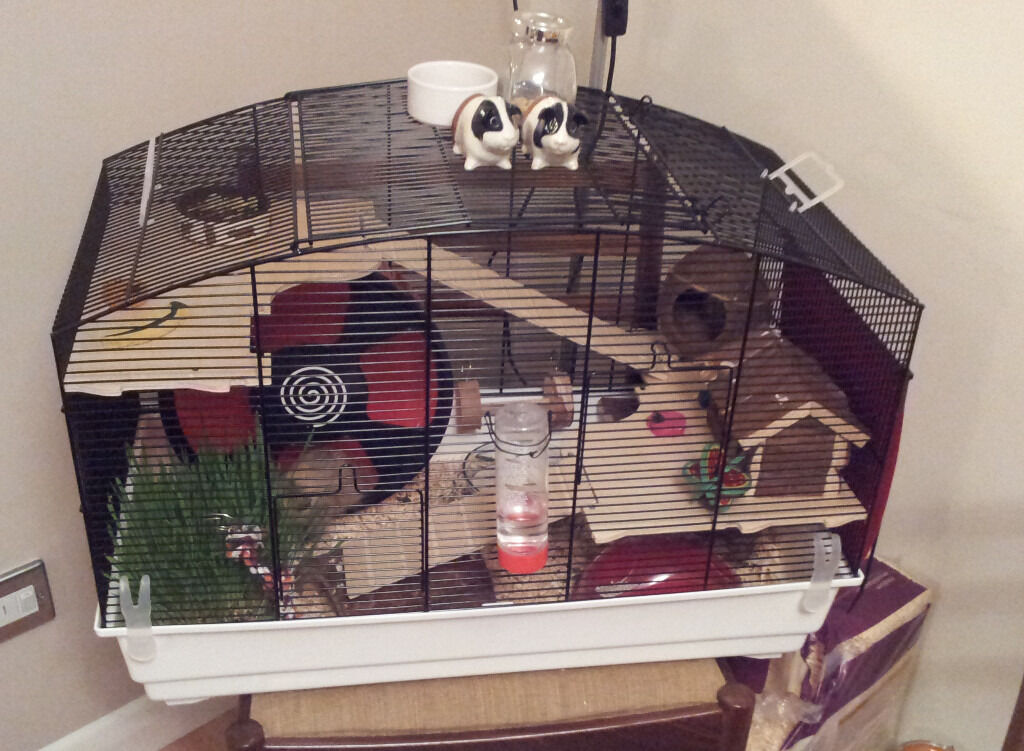 large syrian hamster cage from zooplus and accessories. Black Bedroom Furniture Sets. Home Design Ideas