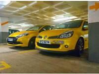 Renault Clio 197 F1