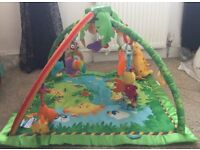 Fisher Price Jungle Mat