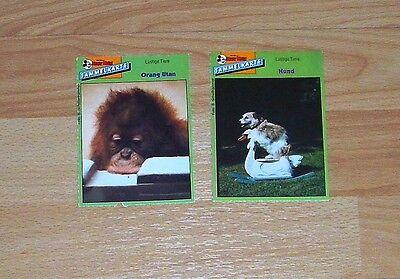 Micky Maus Sammelkarte x 2 - Lustige Tiere - Orang Utan & Hund (90er)