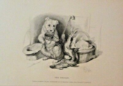 Sir Edwin Landseer, The Beggar, Cute Little Dog Vintage 1889 Antique Art Print a