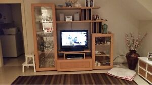TV unit Sans Souci Rockdale Area Preview