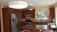 Winter specials on interior residential renovation