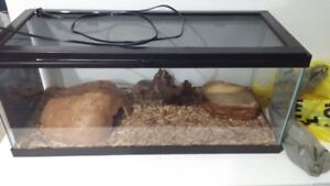 Reptile tray with accessories for sale