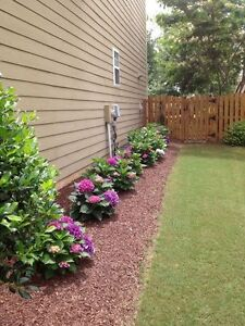 looking to do your landscaping