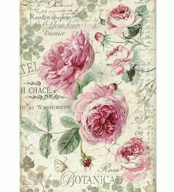 Stamperia Decoupage Rice Paper Pack - A4 Sheet - English Roses