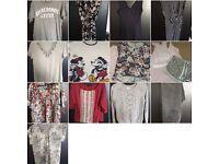 Ladies joblot of clothing size 12/14
