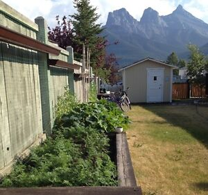Looking for a house in Canmore for a year?