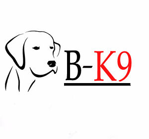 PROFESSIONAL DOG TRAINING *ALL AGES/BREEDS*