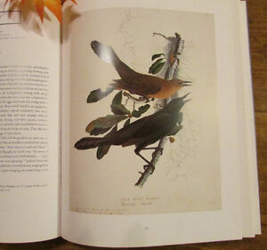 Audubon: The Watercolors for THE BIRDS OF AMERICA ** MINT ** Kitchener / Waterloo Kitchener Area image 5