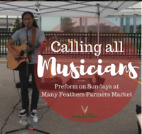 Looking for Performers for a Farmers Market in Meadowvale