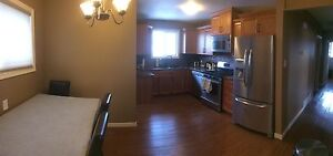 Available immediately one bedroom basement for rent