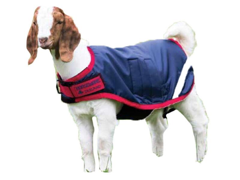 Horseware Ireland - Waterproof Goat Coat - Navy & Red - XXL