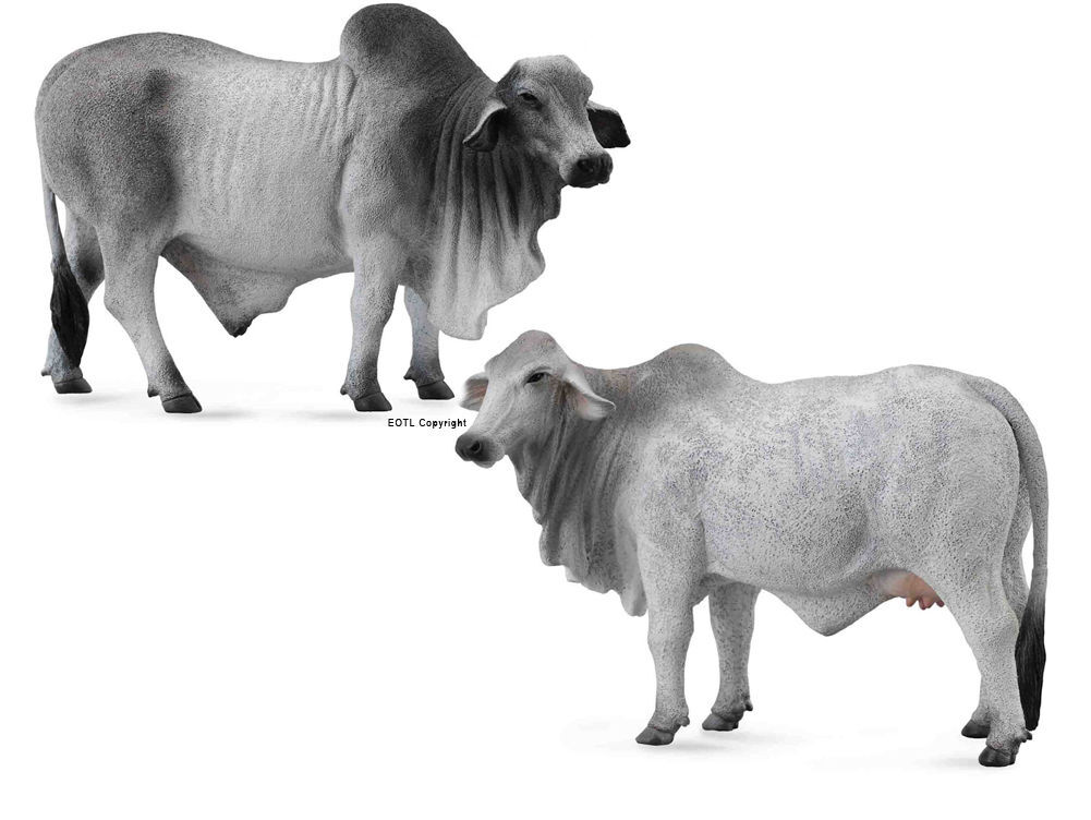 Set of 2 *NEW* CollectA 88579 /& 88580 Grey Brahman Bull /& Cow Group
