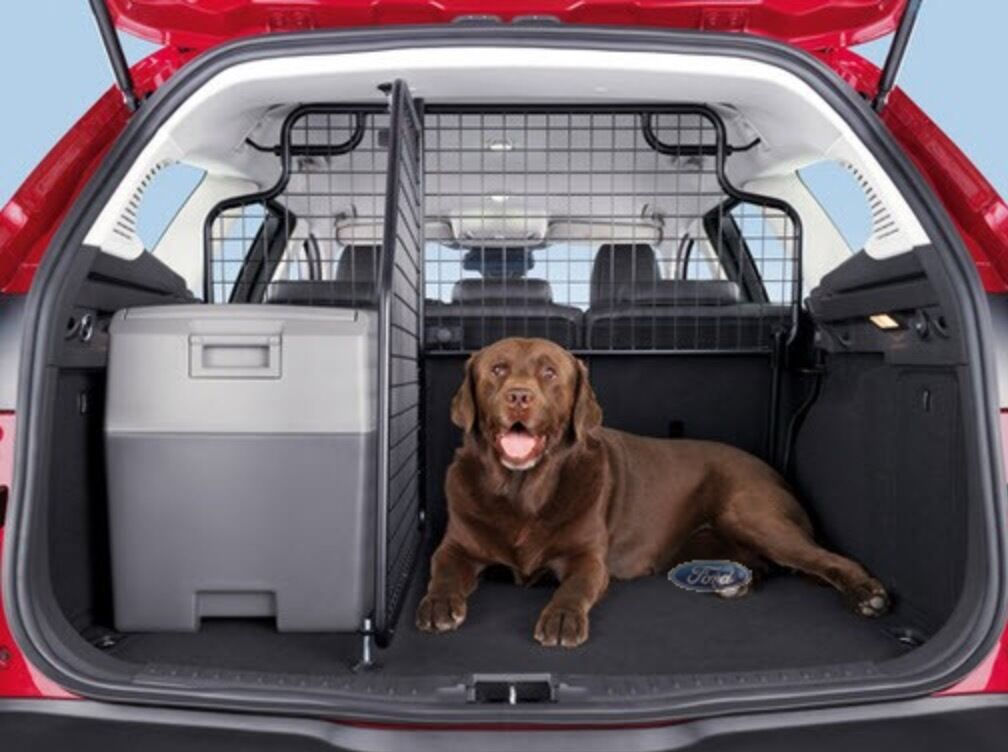 Genuine Ford Focus Estate Dog Guard 2011 Onwards With