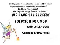 NEED A CLEANER? CALL THE CLEANING FAIRY TODAY!