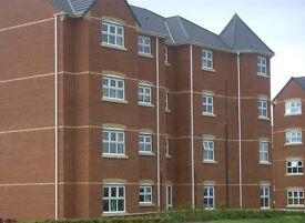 Modern 2 bed flat, 1st floor, opposite Dalton Park