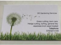 Grass cutting-Hedges-weeding & more