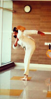 Learn Karate , Self defense Today ! Private classes available