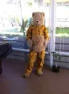 Bear suit costume Uki Tweed Heads Area Preview