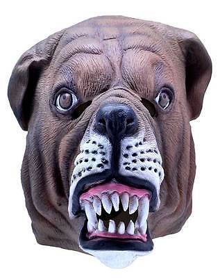 Herren Bulldogge Maske Britische Bulldogge Latex Tier Kostüm Neu
