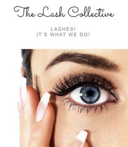 Model call for Lash Extensions and Lash lift!