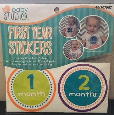 First Year Monthly Milestone Photo Sharing Baby Belly Stickers 1-12
