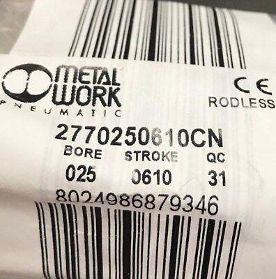 2770250610cn Metalwork Rodless Cylinder