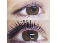 LVL Lashes Eyelash Extensions Introductory Offer