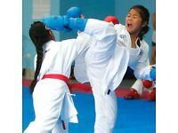 Martial arts classes for 2018