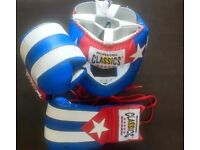 Cleto Reyes Classic Boxing Gloves and Headguard