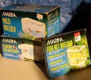 MARINA Fish Products Devonport Devonport Area Preview