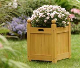 Pot/planter wanted