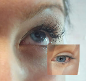 Eyelash Extensions - in home service available! Cambridge Kitchener Area image 2