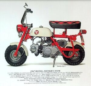 ANY OLD HONDA Z50 MINI BIKE WANTED, Z50M. CZ100, Z50A Morpeth Maitland Area Preview