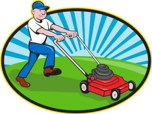 Lawn mowing services and extras - very reasonable
