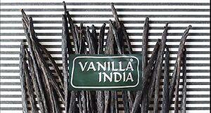 50g VANILLA INDIA Bourbon Vanille planifolia Vanilleschoten 17-18cm ölig-weich