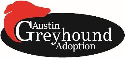 Austin Greyhound Adoption