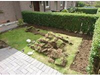 Garden Maintenance and small landscaping jobs