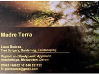 Tree Work, Gardening, landscaping