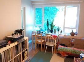 Double bedroom to rent in 2-bed flat in Highbury