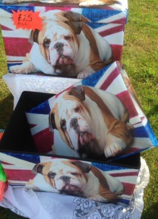 Stunning dog boxes fold flat