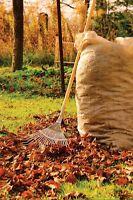 Leaf Raking And Bagging