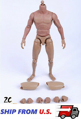 Zc Toys 1 6 Muscular Nude Figure Body For Hot Toys Ttm19 Fit Wolverine Head Usa